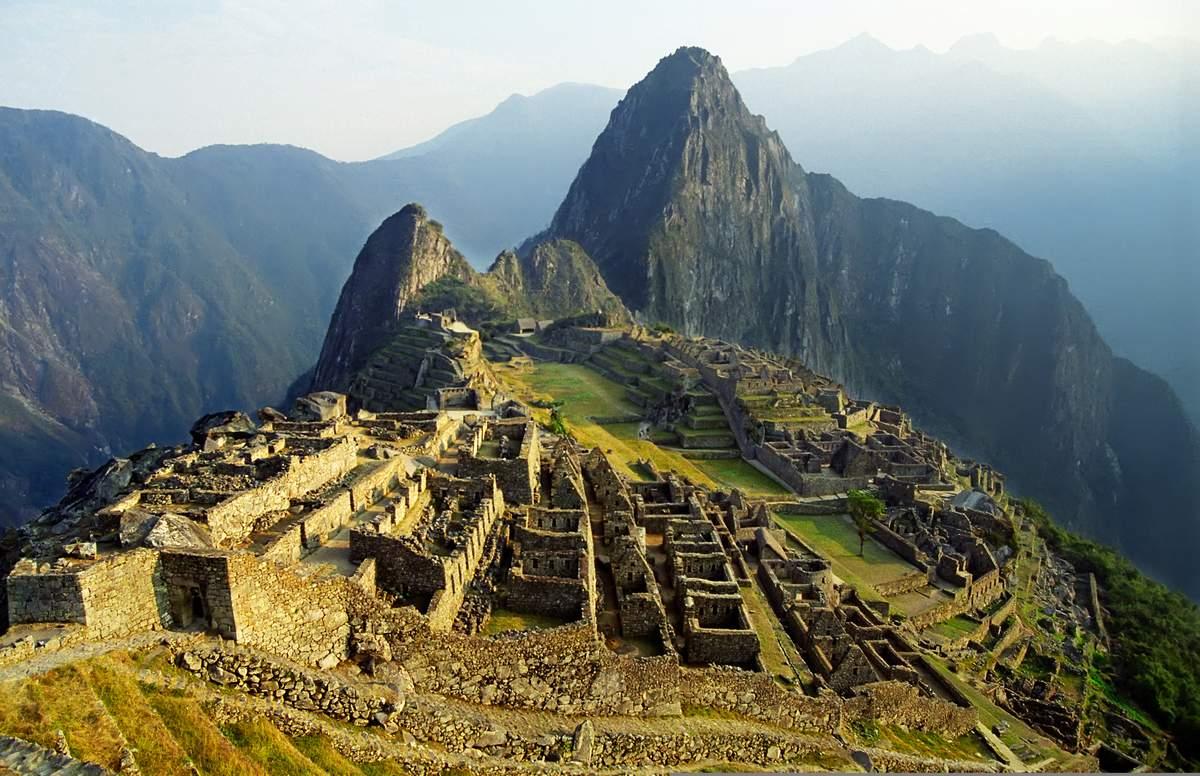 Camu_Camu_Peru_BG