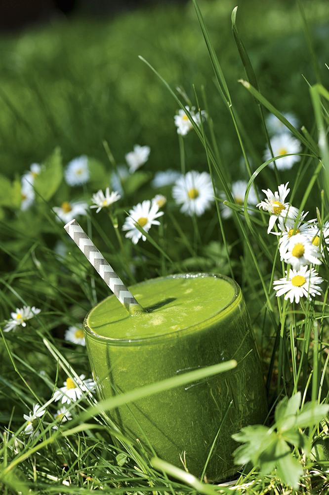 Smoothie Rezept mit Gänseblümchen, Spinat, Himbeeren, Erdbeeren, Äpfel, Banane, Avocado, MykoSan LIGHT