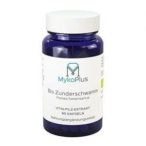 MykoPlus-Bio-Zunderschwamm-Vitalpilz-Extrakt-Kapseln-60-Stck-B01NBTBRKO