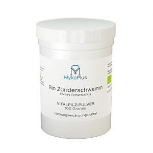 MykoPlus-Bio-Zunderschwamm-Vitalpilz-Pulver-100-Gramm-B01N32HXBN