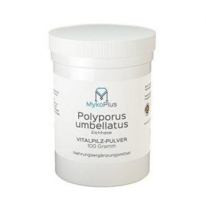 MykoPlus-Polyporus-Vitalpilz-Pulver-100-Gramm-B01N32HSTG